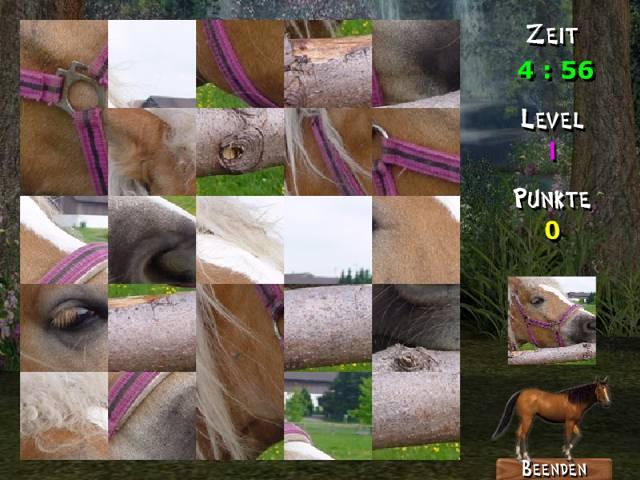Vorschau abramania pferde - Bild 1