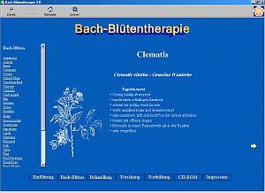 Vorschau Bach-Bl�tentherapie - Bild 1