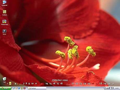 Vorschau DTgrafic FlowerPower - Bild 1