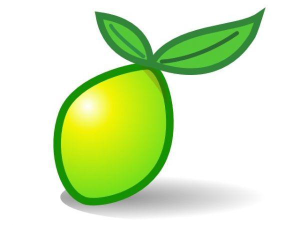 Vorschau LimeSurvey - Bild 1