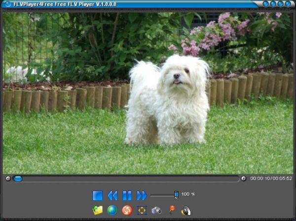 Vorschau FLVPlayer4Free Free FLV Player - Bild 1