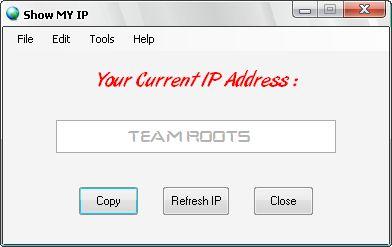 Vorschau Show My IP Software - Bild 1