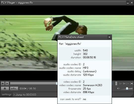 Vorschau FLV Player - Bild 1