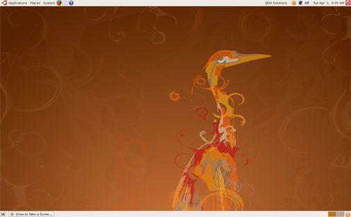 Vorschau Ubuntu und Kubuntu -Hardy Heron- - Bild 1