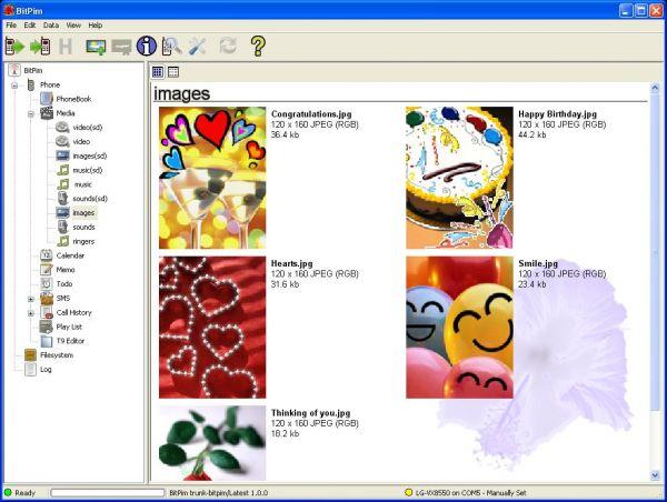 Vorschau BitPim - Bild 1