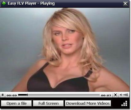 Vorschau Easy FLV Player - Bild 1
