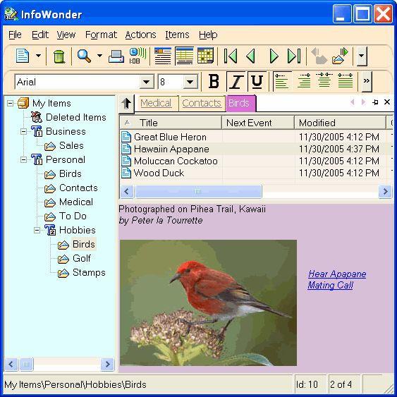 Vorschau InfoWonder - Bild 1