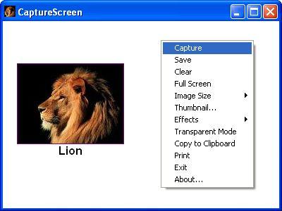 Vorschau CaptureScreen - Bild 1