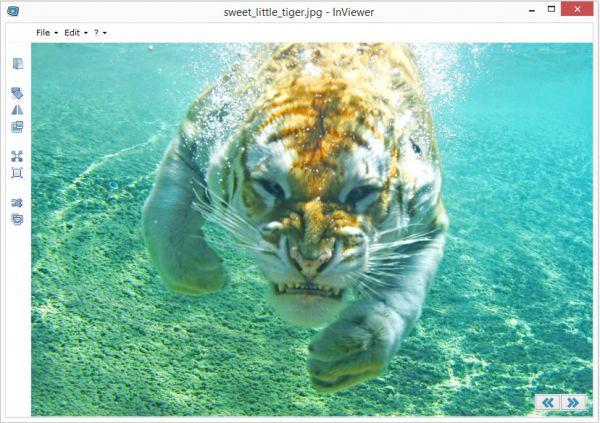 Vorschau InViewer zuvor GIF Viewer - Bild 1