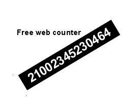 Vorschau PHP hit counter - Bild 1
