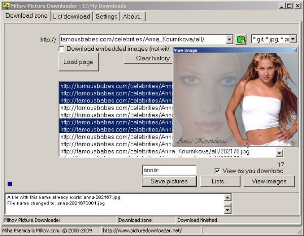 Vorschau Mihov Picture Downloader - Bild 1