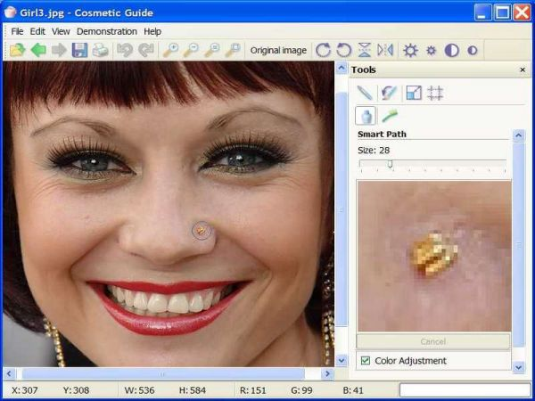 Vorschau Cosmetic Guide Lite - Bild 1