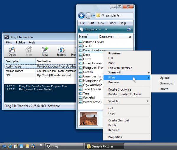 Vorschau Fling Free FTP Uploader Software - Bild 1