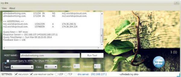 Vorschau Ivy DNS - Bild 1