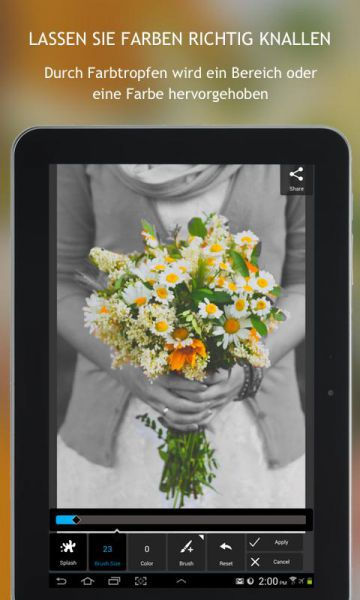 Vorschau Autodesk Pixlr Express for Android - Bild 1