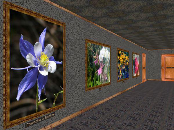 Vorschau Phota Flowers Screensaver - Bild 1