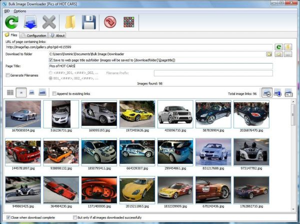 Vorschau Bulk Image Downloader - Bild 1
