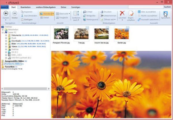 Vorschau cPicture - Bild Verwaltung - Bild 1