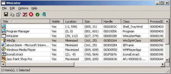 Vorschau WinLister - Fenster Informationen - Bild 1