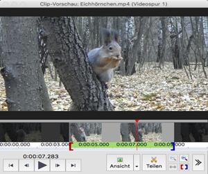 Vorschau VideoPad Video-Editor Mac - Bild 2