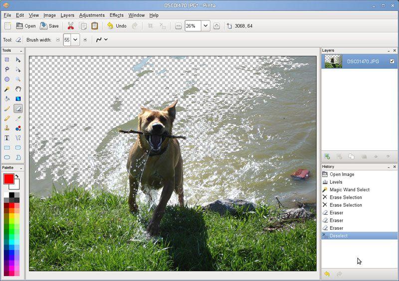 Vorschau Pinta for Linux - Bild 3
