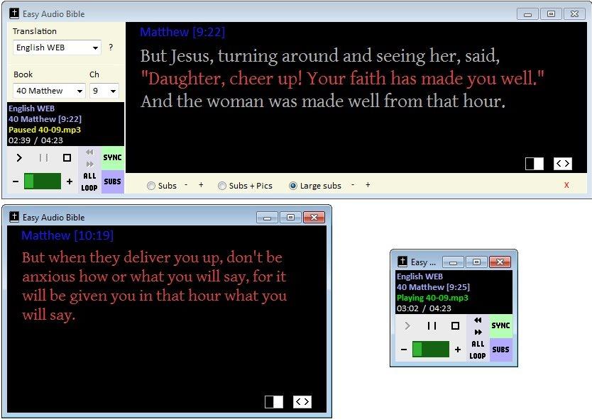 Vorschau Easy Audio Bible - Bild 3