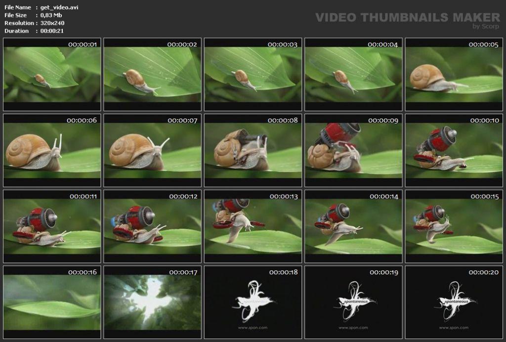 Vorschau Video Thumbnails Maker - Bild 4
