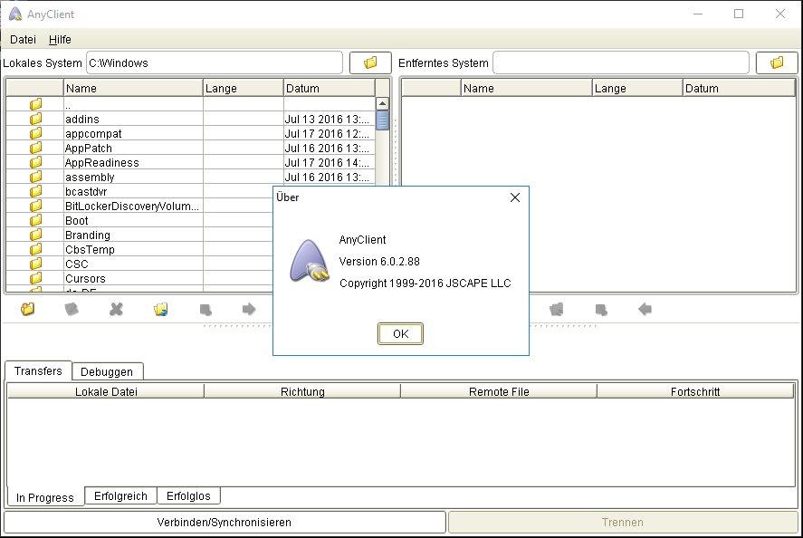 Vorschau AnyClient - Bild 4